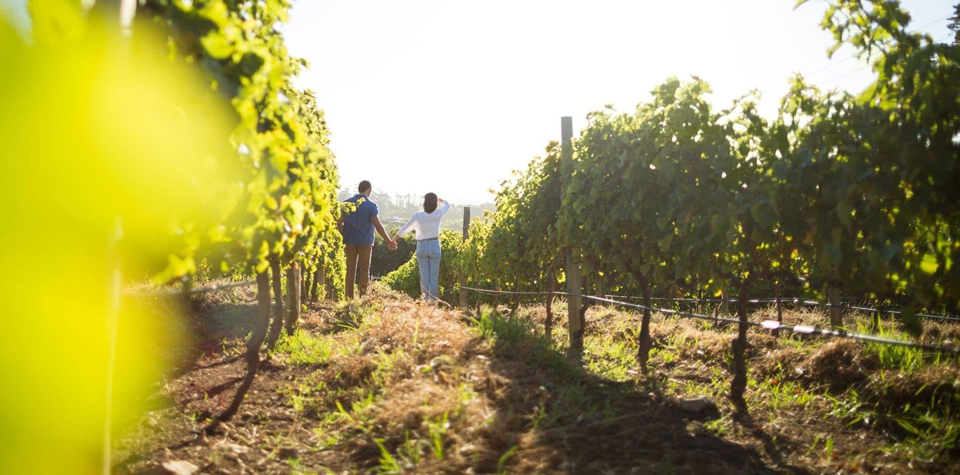Weinregionenhotels