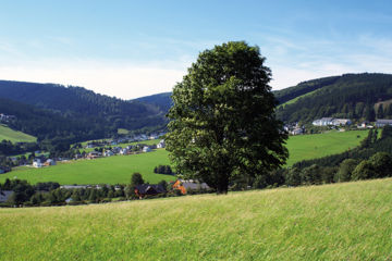 WALDHOTEL WILLINGEN Willingen (Upland)