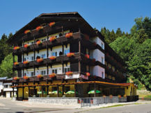 HOTEL AM STEINBACHTAL Bad Kötzting